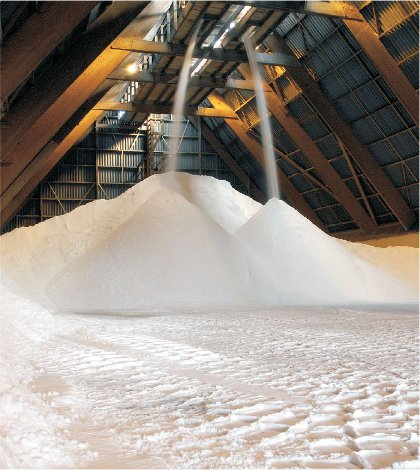 A photograph showing salt being transferred to a large silo for storage, prior to being converted to chlorine and sodium hydroxide